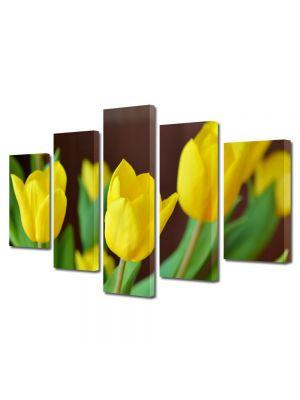 Set Tablouri Multicanvas 5 Piese Flori Lalele galbene