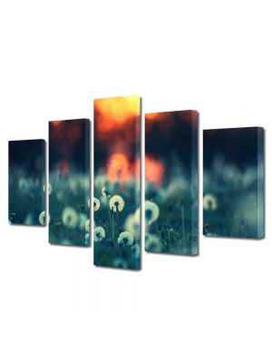 Set Tablouri Multicanvas 5 Piese Flori Papadii la apus
