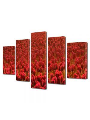Set Tablouri Multicanvas 5 Piese Flori Lalele rosii Scarlet