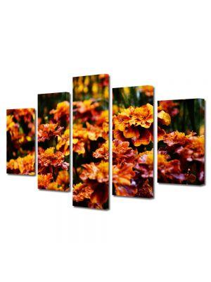 Set Tablouri Multicanvas 5 Piese Flori Flori de gradina