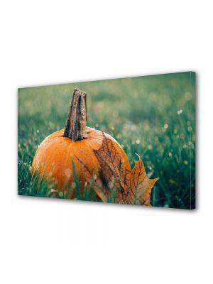 Tablou Canvas Halloween Halloween dovleac in iarba