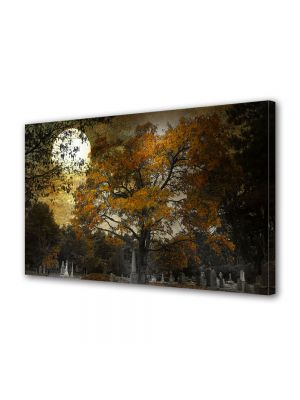 Tablou Canvas Halloween Halloween copac vechi