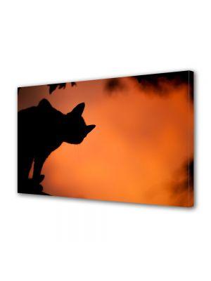 Tablou Canvas Halloween Silueta cap de pisica