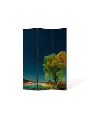 Paravan de Camera ArtDeco din 3 Panouri Peisaj Viteza 105 x 150 cm
