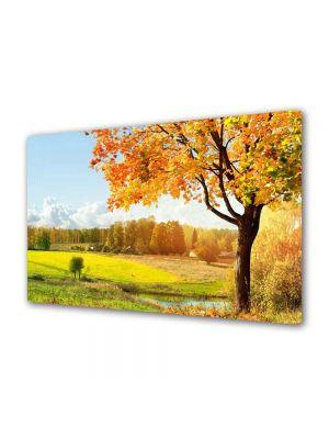 Tablou Canvas Peisaj Toamna pe campie