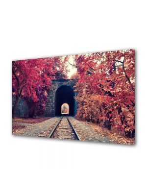 Tablou Canvas Peisaj Cale ferata