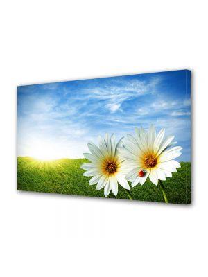 Tablou Canvas Peisaj Doua Flori