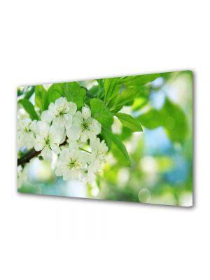 Tablou Canvas Peisaj Flori inflorite