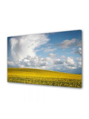 Tablou Canvas Luminos in intuneric VarioView LED Peisaj Nori frumosi