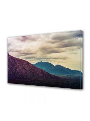 Tablou Canvas Peisaj Violet