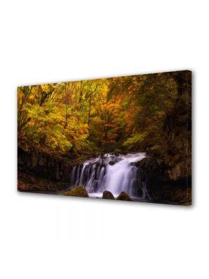 Tablou Canvas Luminos in intuneric VarioView LED Peisaj Cascada in padure