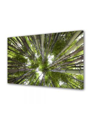 Tablou Canvas Luminos in intuneric VarioView LED Peisaj Brazi