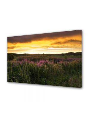 Tablou Canvas Peisaj Flori de camp