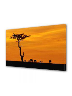 Tablou Canvas Luminos in intuneric VarioView LED Peisaj Africa