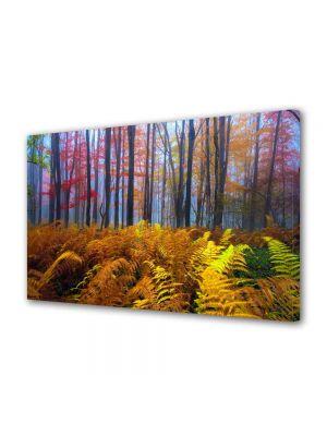 Tablou Canvas Peisaj Veriga in padure