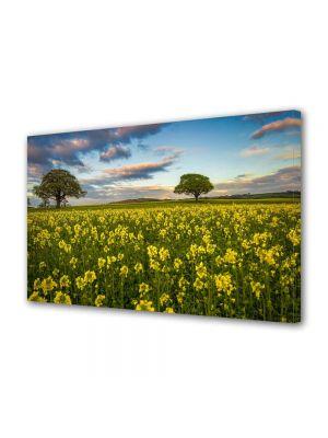 Tablou Canvas Peisaj Flori si copaci