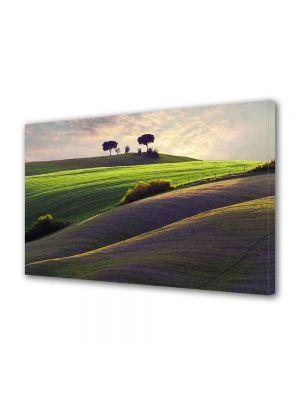 Tablou Canvas Peisaj Campiute