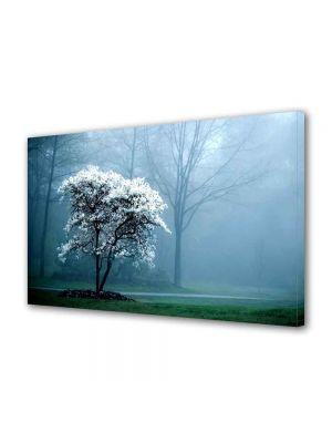Tablou VarioView MoonLight Fosforescent Luminos in intuneric Peisaje copac alb