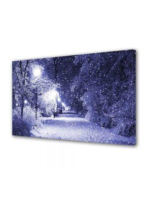 Tablou Canvas Luminos in intuneric VarioView LED Peisaj Ninge