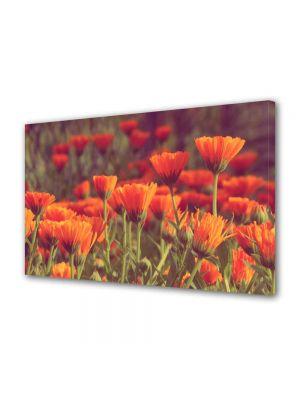 Tablou Canvas Peisaj Flori rosii