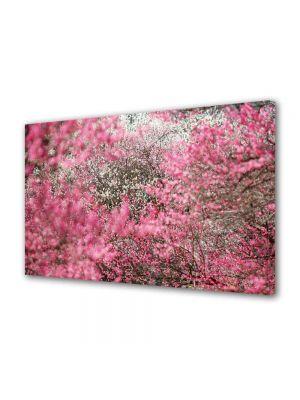 Tablou Canvas Peisaj Nuante de roz
