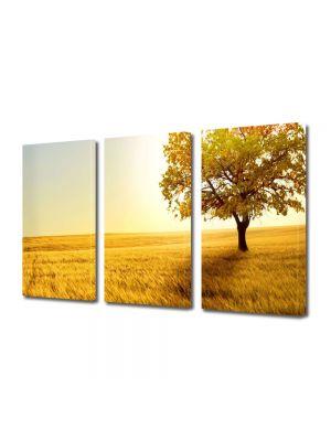 Set Tablouri Multicanvas 3 Piese Peisaj Copac in umbra 70 X 150 cm
