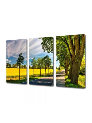 Set Tablouri Multicanvas 3 Piese Peisaj Drum umbrit
