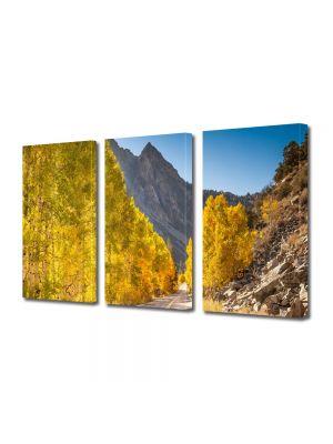 Set Tablouri Multicanvas 3 Piese Peisaj Drum superb