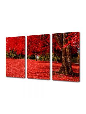 Set Tablouri Multicanvas 3 Piese Peisaj Covor rosu sub copac