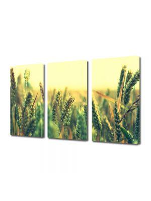 Set Tablouri Multicanvas 3 Piese Peisaj Grau verde