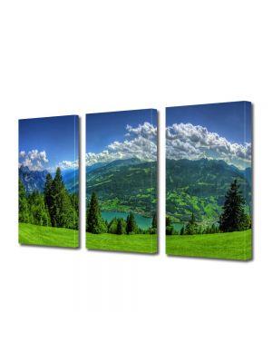 Set Tablouri Multicanvas 3 Piese Peisaj Campie de munte