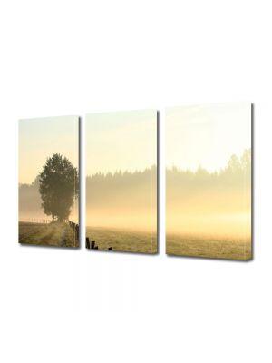 Set Tablouri Multicanvas 3 Piese Peisaj Ceata
