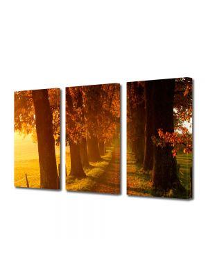 Set Tablouri Multicanvas 3 Piese Peisaj Carare
