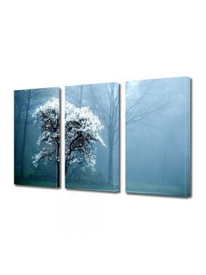 Set Tablouri Multicanvas 3 Piese Peisaj copac alb