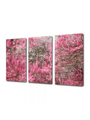 Set Tablouri Multicanvas 3 Piese Peisaj Nuante de roz