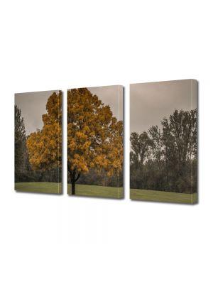Set Tablouri Multicanvas 3 Piese Peisaj Copac la amurg