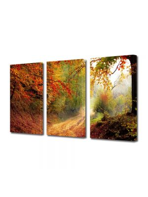 Set Tablouri Multicanvas 3 Piese Peisaj Poteca prin padure