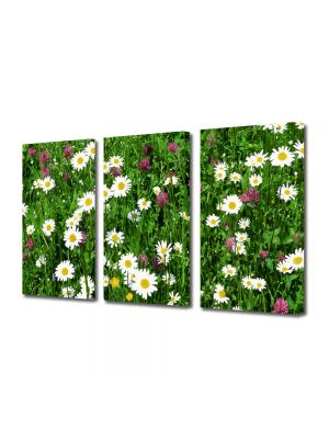 Set Tablouri Multicanvas 3 Piese Peisaj Flori diverse