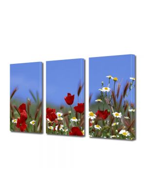 Set Tablouri Multicanvas 3 Piese Peisaj Flori pe camp