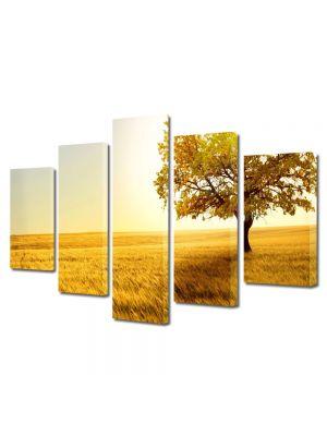 Set Tablouri Multicanvas 5 Piese Peisaj Copac in umbra