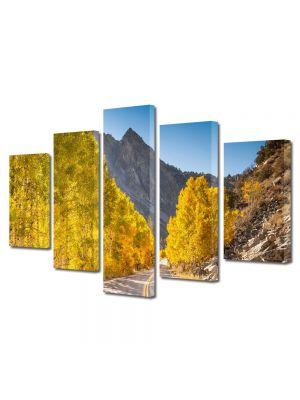 Set Tablouri Multicanvas 5 Piese Peisaj Drum superb