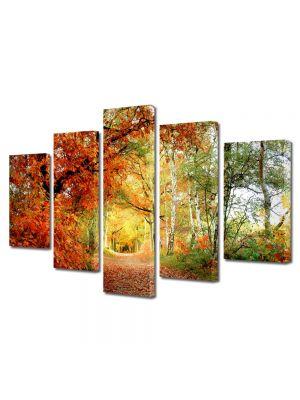 Set Tablouri Multicanvas 5 Piese Peisaj Tunel natural 70 x 125 cm - 44% reducere
