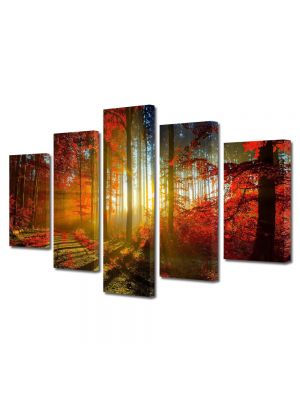Set Tablouri Multicanvas 5 Piese Peisaj Lumina printre copaci