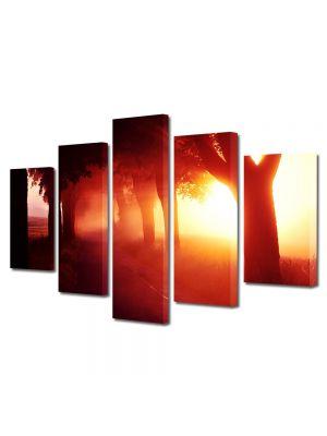Set Tablouri Multicanvas 5 Piese Peisaj Lumina fantastica