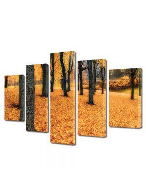 Set Tablouri Multicanvas 5 Piese Peisaj Toamna in padure