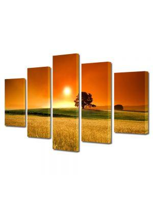 Set Tablouri Multicanvas 5 Piese Peisaj In lanul de secara