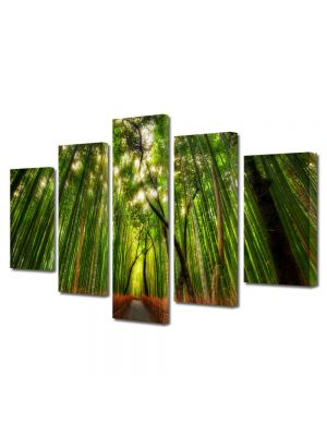Set Tablouri Canvas 5 Piese Peisaj Padure de bambus