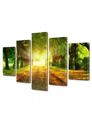 Set Tablouri Multicanvas 5 Piese Peisaj Lumini fantastice