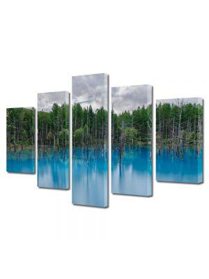 Set Tablouri Canvas 5 Piese Peisaj Bleu