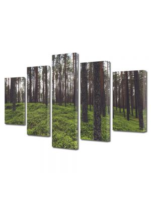 Set Tablouri Canvas 5 Piese Peisaj Padure rara